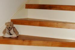 traptreden renovatie